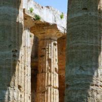 Il Tempio di Hera (550 - 450 a.C.)